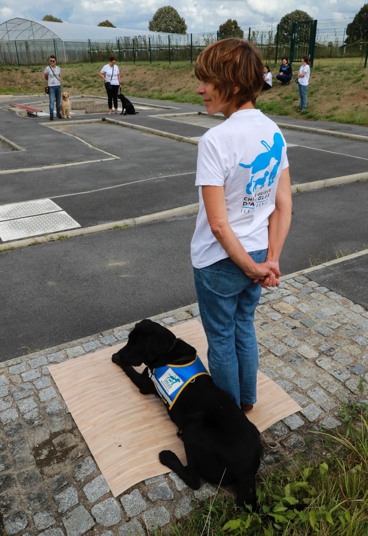 chien guide d aveugle paris