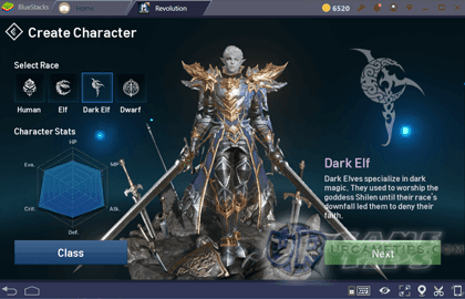 lineage 2 guide for beginners