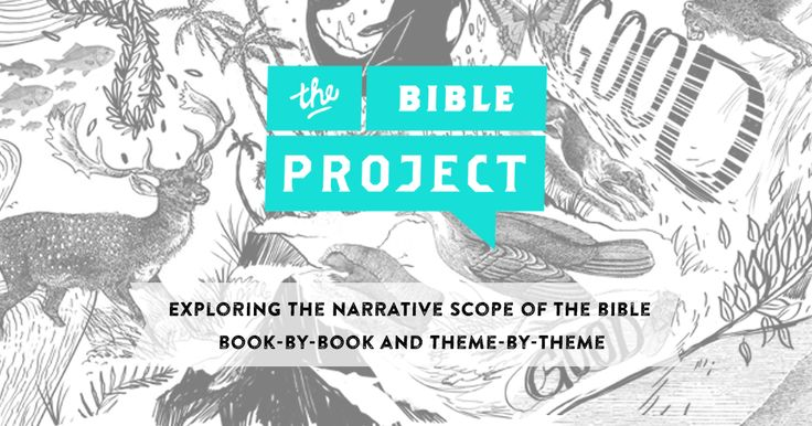 the bible project study guide