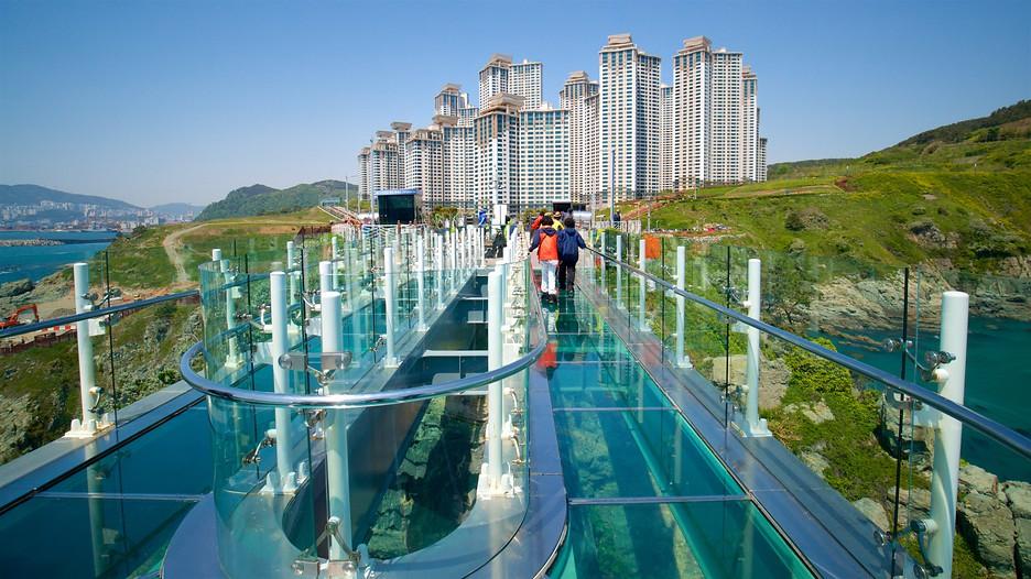 budget travel guide south korea