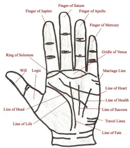 palm reading guide in malayalam