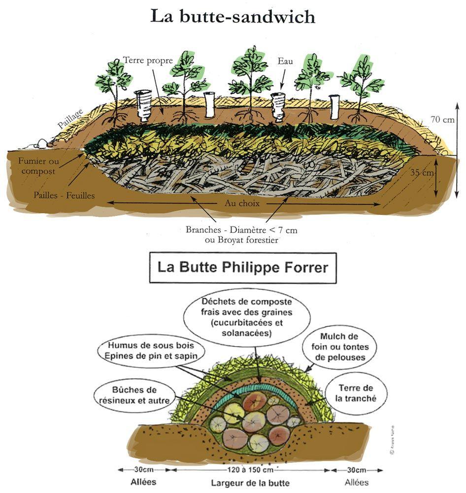 guide de la permaculture au jardin