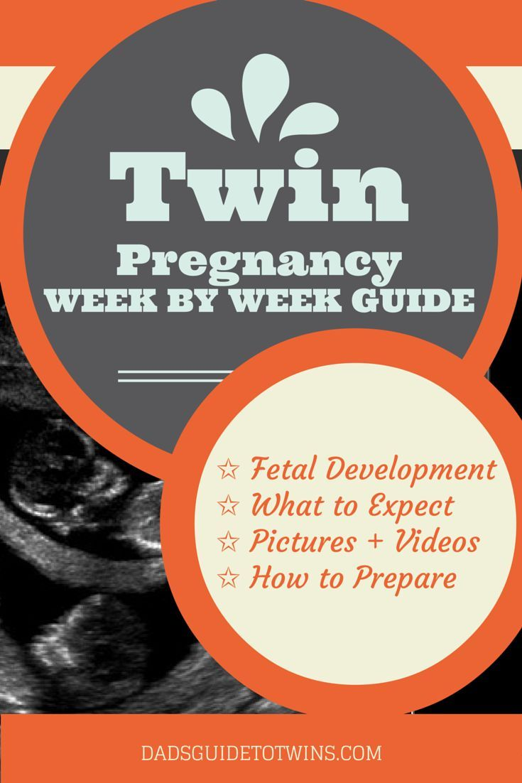 pregnancy week by week food guide