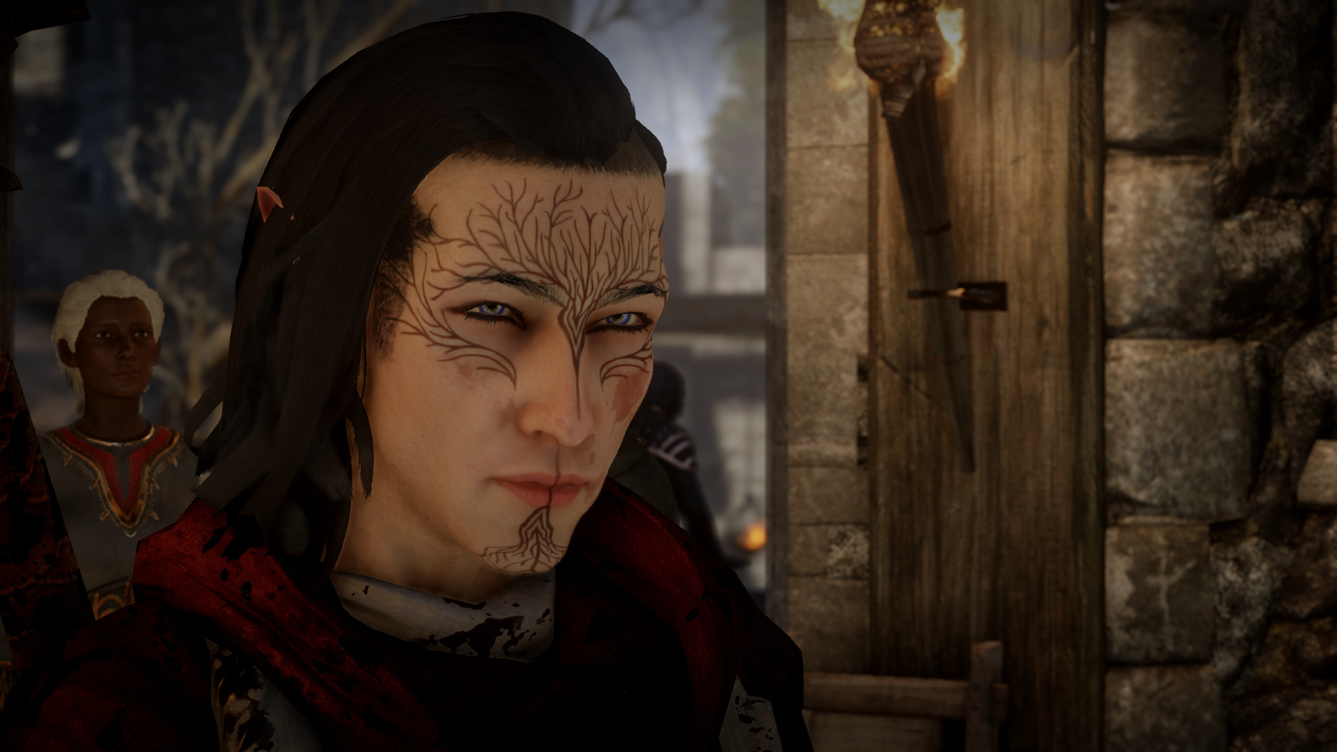 dragon age inquisition mage guide