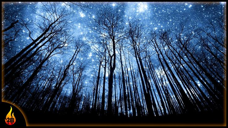 guided sleep meditation forest relax