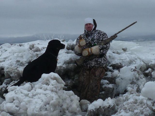 marc harvey guide de chasse